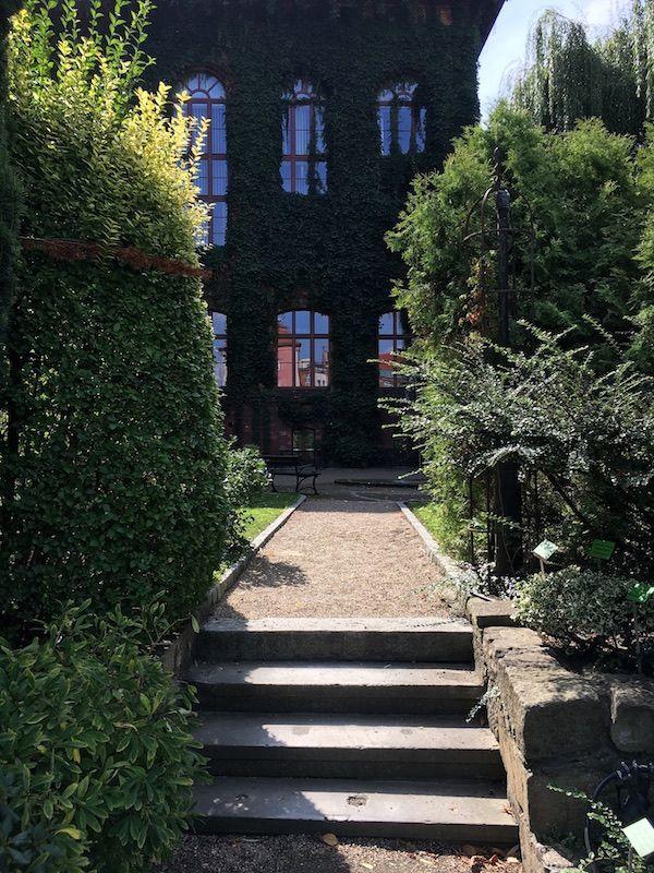 Ogród Botaniczny - schody