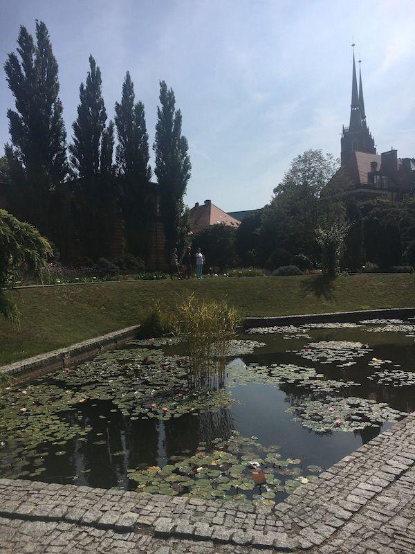 Ogród Botaniczny - Widok na Archikatedrę