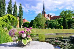 Ogród Botaniczny - Widok na Ostrów Tumski
