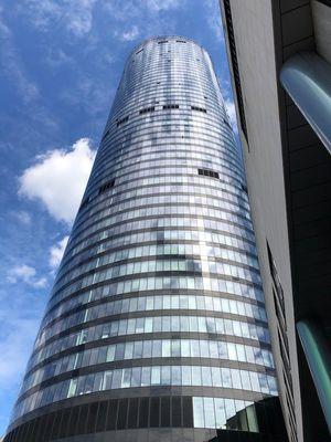 Sky Tower - widok z dołu