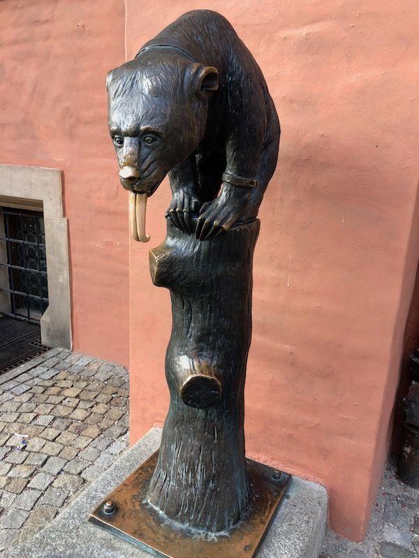 Niedźwiedź - Fontanna Wrocław